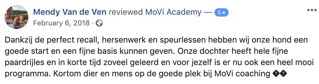 corgie - MoVi Academy online hondenschool