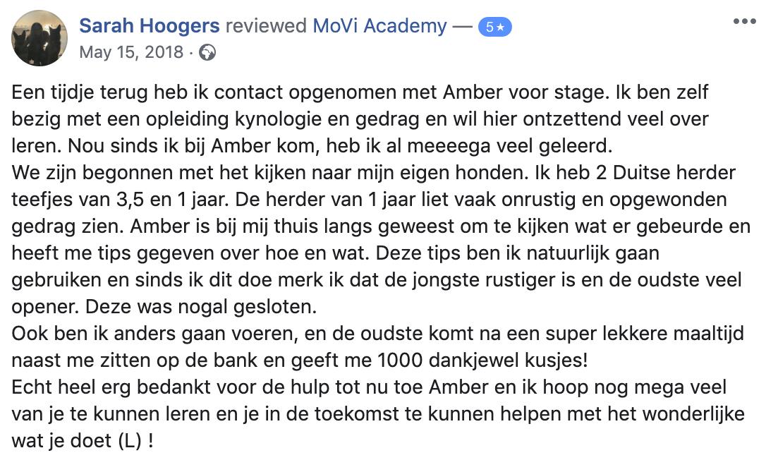 duitse herder - stage - MoVi Academy online hondenschool