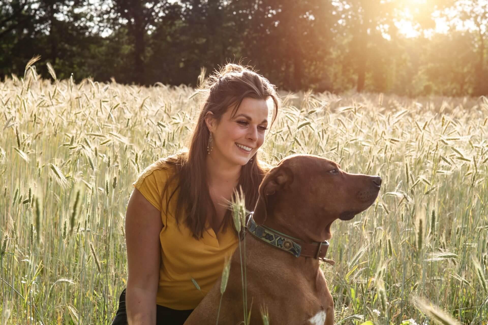 MoVi Academy - hondentrainingen en hondencursussen