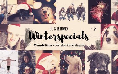 Jij en je hond winterspecials: Wandeltips voor donkere dagen