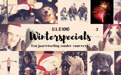 Jij en je hond winterspecials: Een jaarwisseling zonder vuurwerk!