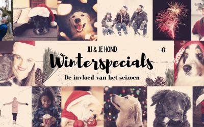 Jij en je hond winterspecials: De invloed van het seizoen